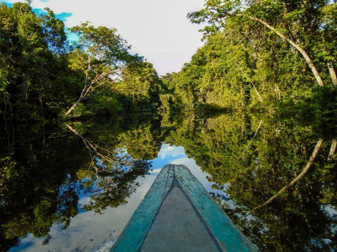 6 comidas típicas da Amazônia que você precisa experimentar