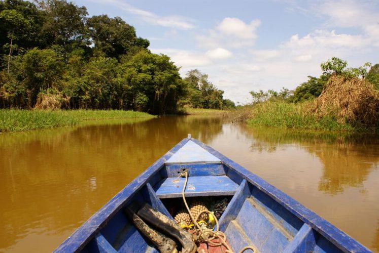Tudo que você sempre quis saber sobre o turismo na Amazônia